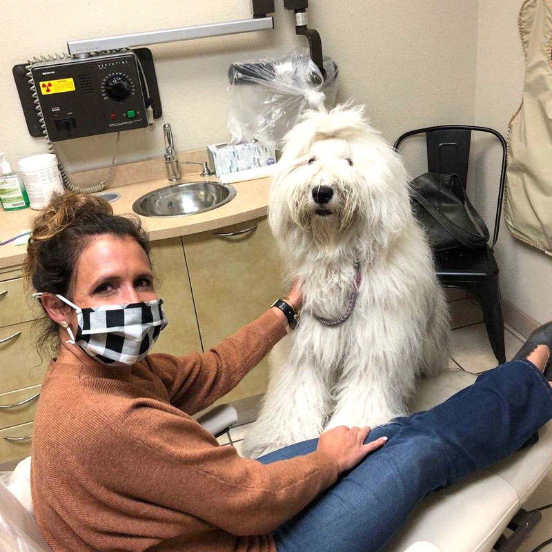 chloe-the-therapy-dog